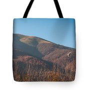 Flying Over The Morning Tote Bag