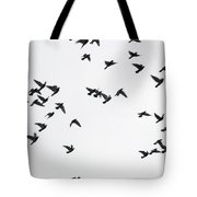 Flying Pigeons Tote Bag