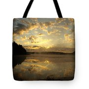 Flying Reflections Tote Bag