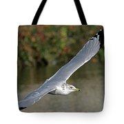 Flying Sea Gull - Eugene Oregon Tote Bag