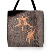 Flying Squirrels Tote Bag