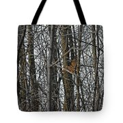 Flying Through The Trees Of The Forest Tote Bag