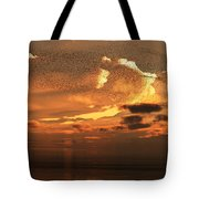Flying To South Tote Bag