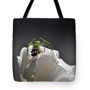 Flys At The Picnic Tote Bag