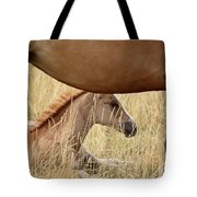 Foal And Mare In A Saskatchewan Pasture Tote Bag
