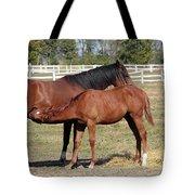 Foal Feeding With Milk Ranch Scene Tote Bag