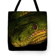 Focus - A Close Look At An Emerald Boa Constrictor Tote Bag