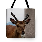Focus Deer Tote Bag