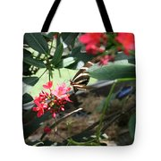 Focus In The Center - Black And White Butterfly Tote Bag