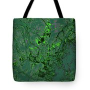 Focus Of Attention 11 Tote Bag