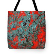 Focus Of Attention 18 Tote Bag