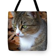 Focused Tote Bag