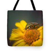 Focused June Beetle Tote Bag