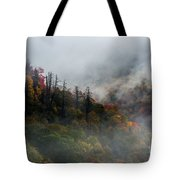 Fog And Color. Tote Bag by Itai Minovitz