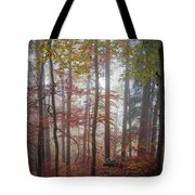 Fog In Autumn Forest Tote Bag