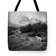 Fog In The Organ Mountains Tote Bag