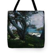 Fog Intrusion Point Lobos Tote Bag