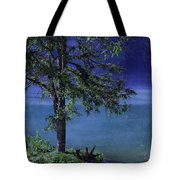 Fog Over The Pond Tote Bag