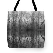 Foggy Lagoon Reflection #3 Tote Bag