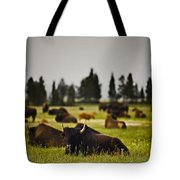 Foggy Herd Tote Bag