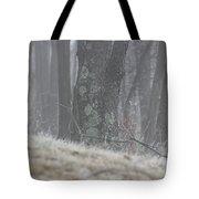 Foggy Moss Tote Bag