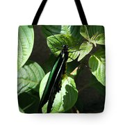 Folded Up - Green And Black Butterfly Tote Bag