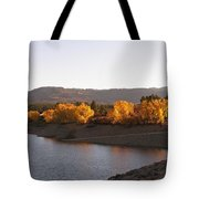 Foliage At Jackson Lake Tote Bag