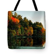 Foliage Reflections Tote Bag