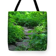 Following Dreams Tote Bag