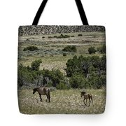 Following Momma Tote Bag