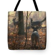 Following The Does Tote Bag