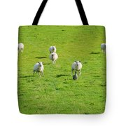 Following The Leader Tote Bag