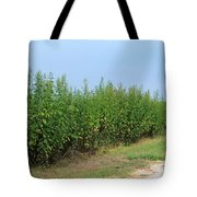 Food Of The Gods Tote Bag