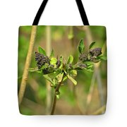 For A Moment I Am Still Tote Bag