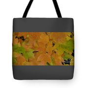 For Every Season There Is A Color Tote Bag