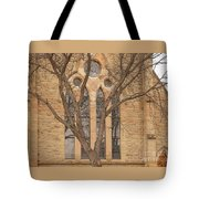 For Reflection Tote Bag
