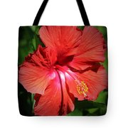 For The Love Of Hibiscus Tote Bag