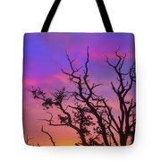 For The Love Of Sunrise  Tote Bag