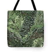 For The Love Of Trees Tote Bag