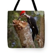 Foraging Pileated Woodpecker Tote Bag