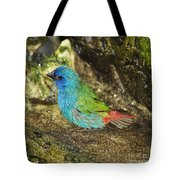 Forbes Parrot Finch Tote Bag