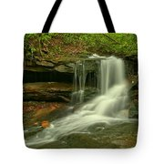 Forbes State Forest Cole Run Cave Falls Tote Bag