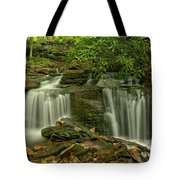 Forbes State Forest Twin Falls Tote Bag