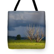 Forbidding Skies Tote Bag