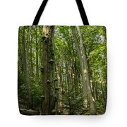Forest 1 Tote Bag