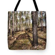 Forest Next Summer After A Fire Tote Bag