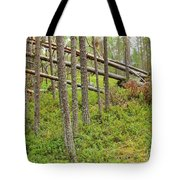 Forest After Storm - Fall Pines In Wild Forest Tote Bag