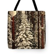 Forest Christmas Tree Tote Bag
