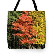 Forest Door Tote Bag