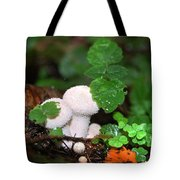 Forest Fairy Tale Tote Bag